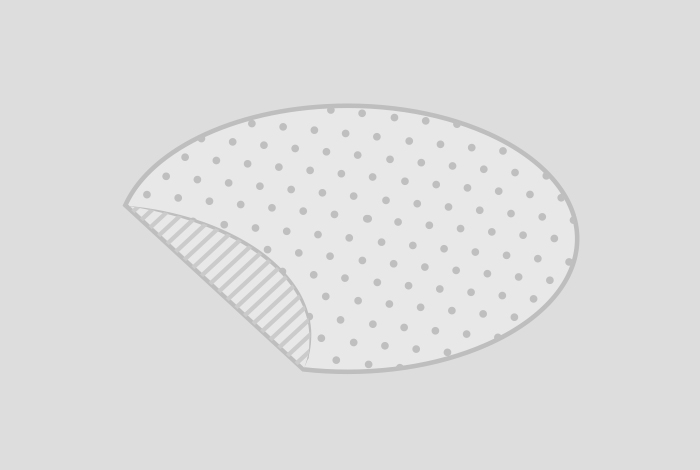Transparente Folienetiketten, oval, 63,5 x 42,3 mm, matt